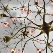 Лечение периферической нервной системы