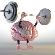 neurology zabolevaniya 0 - Неврология в Израиле