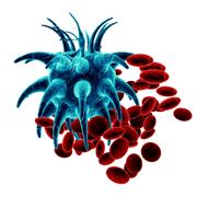 lechenie raka krovi v izraile 180 - Лечение рака крови в Израиле – методики 21 века