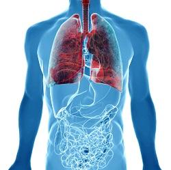 Лечение рака лёгких в Израиле